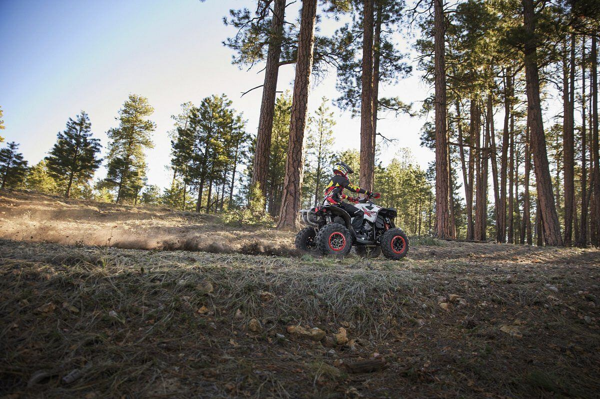 Review Can-Am Renegade X XC 650 T3B ABS 2018 - atv