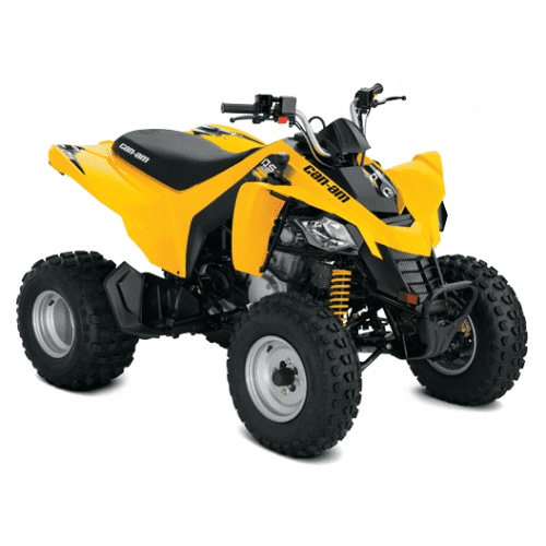 QUAD Can-Am DS 250 '18