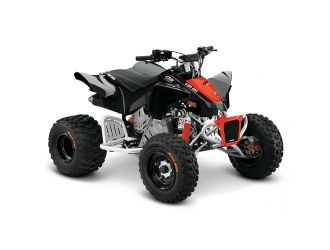 Can-Am DS 90 X '19
