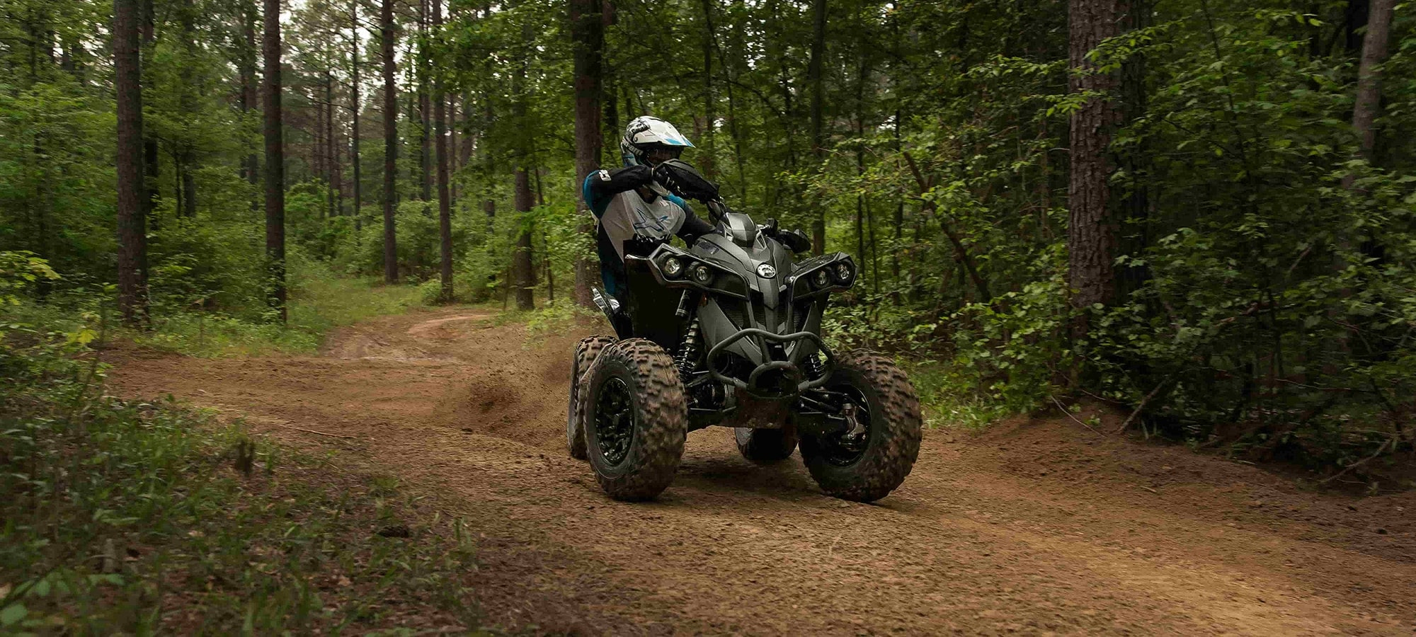 Banner ATV Arctic Cat 6